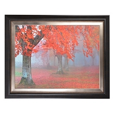 Arboles Rojos Framed Art Print at Kirkland's