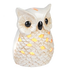 Ceramic Cream Owl Night Light at Kirkland's