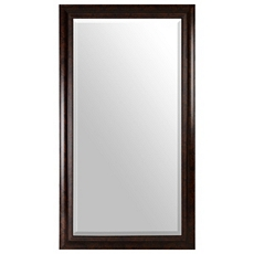Tortoise Full Length Mirror, 38x68 at Kirkland's