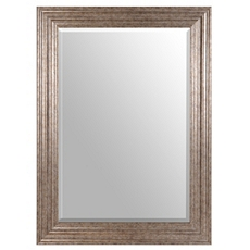 Antique Silver Mirror, 32x44 at Kirkland's