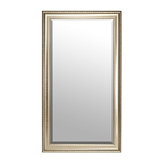 Champagne Full Length Mirror, 38x68 at Kirkland's