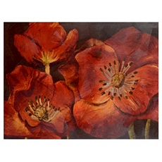 Dazzling Poppies Canvas Art Print at Kirkland's