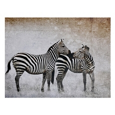 Zebra Companions Canvas Art Print at Kirkland's