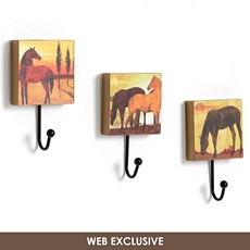 Horse Wall Hook, Set of 3 at Kirkland's