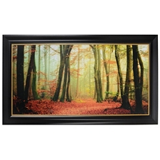 Colorfall Framed Art Print at Kirkland's