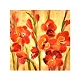 Majestic Gladiola Canvas Art Print at Kirkland's