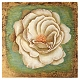 White Peony Canvas Art Print at Kirkland's