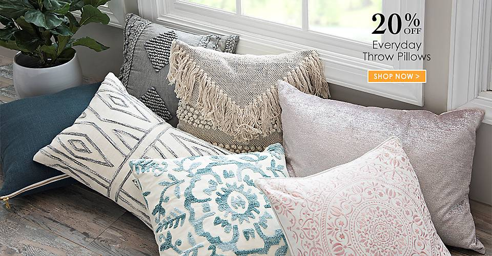 20% off Everyday Throw Pillows - Shop Now