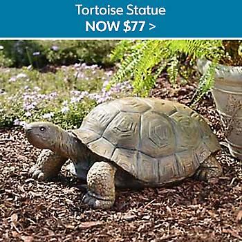 $77 Tortoise Statute