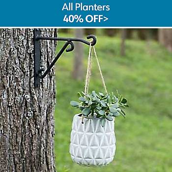 40% Off All Planters