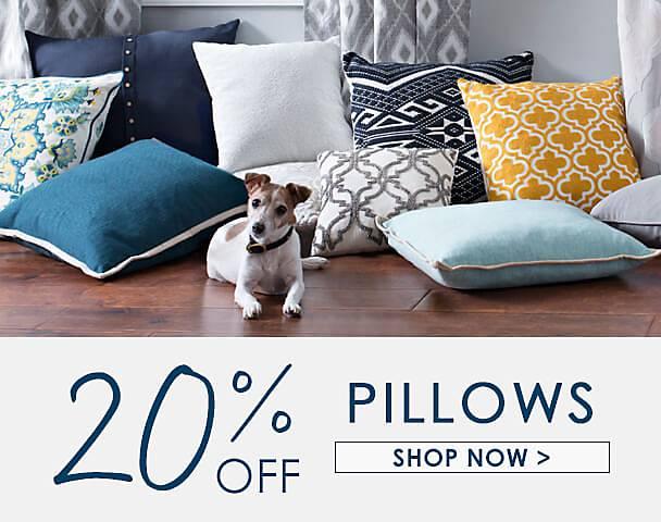 20% Off Pillows - Shop Now
