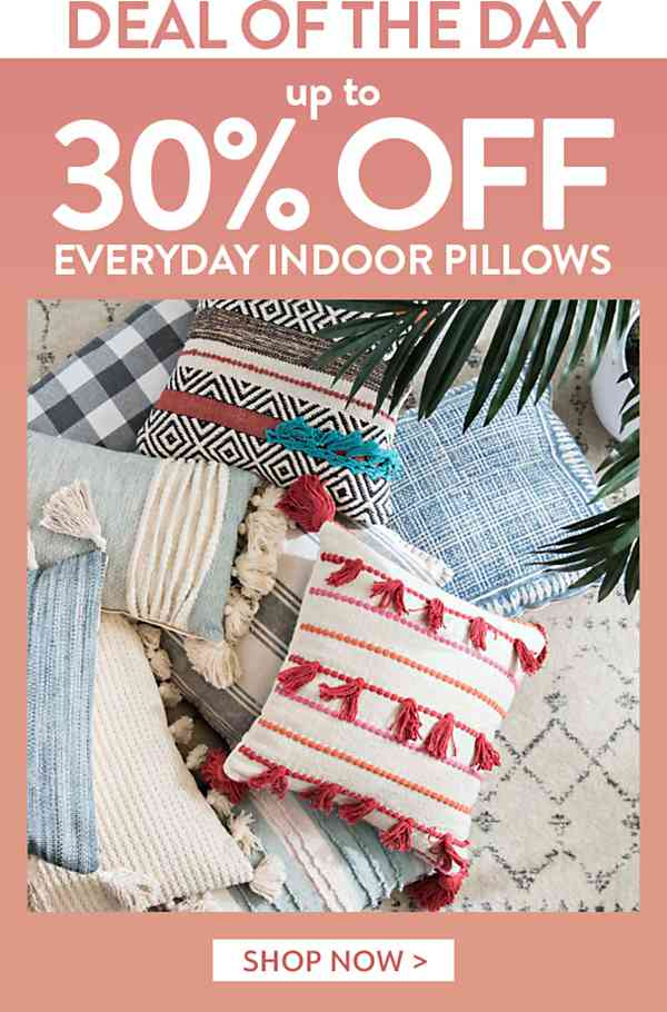 One Day Only! Up to 30% Off Pillows - Shop Now