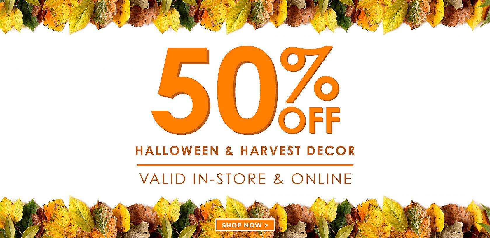 50% Off Halloween and Harvest - Shop Now