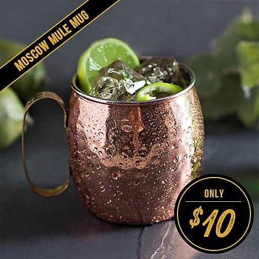 Antique Copper Hammered Moscow Mule Mug Now $10