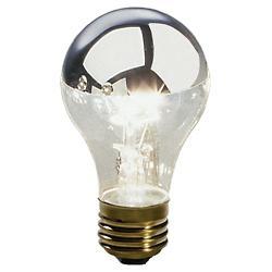 60W 120V A15 E26 Chrome Top Anemone Bulb