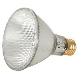 60W 120V PAR30LN E26 Halogen WFL Bulb
