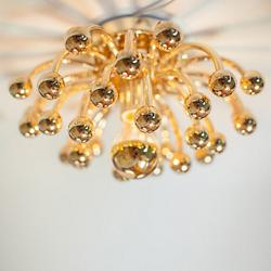 Anemone Brass Flushmount/Wall Light