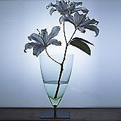 Basequadra Vase