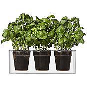 Boskke Cube 3 Plant Pot
