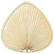 "Caruso 18"" Natural Palm Leaf Wide Oval Blade Set"