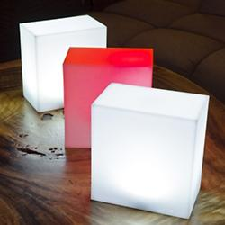 Kong LED Indoor/Outdoor Lamp