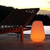 Vessel LED Indoor/Outdoor Lamp