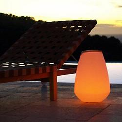 Vessel LED Indoor/Outdoor Lamp