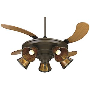 Air Shadow Traditional Ceiling Fan with Lights by Fanimation