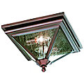 Geneva Outdoor Flushmount by Troy Lighting