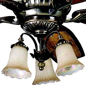 Golden Iridescence Light Kit by Kichler Lighting