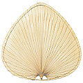 "Caruso 18"" Natural Palm Leaf Wide Oval Blade Set by Fanimation"