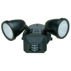 Ariel Motion Detector Spotlight by Access