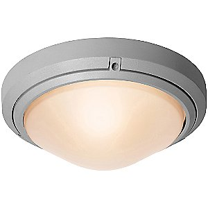 Oceanus Ceiling/Wall Light by Access Lighting