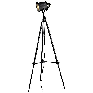 Ethan Adjustable Tripod Floor Lamp by Dimond