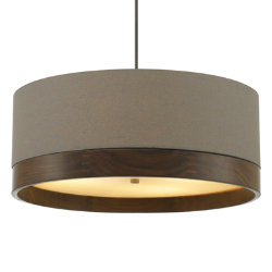 Topo Suspension by Tech Lighting