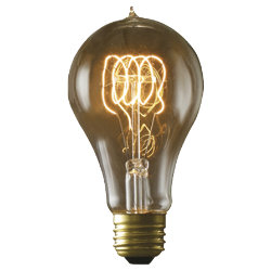 25 Watt A21 Loop Series bulb by Bulbrite