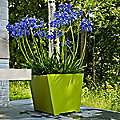 Taper Planter by Loll Designs