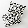 Painted Chevron Duvet Set by DwellStudio