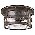 Barbosa Outdoor Flushmount by Troy Lighting