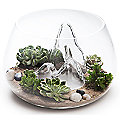 Glasscape Fishbowl by Aruliden