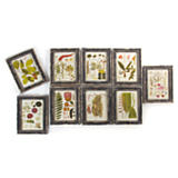 Framed Floral Botanical Prints - Set of 9