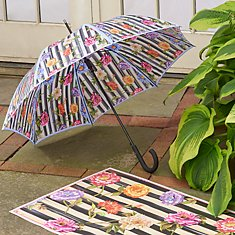 Bumbershoots & Umbrellas