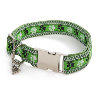 Bow Wow Pet Collar - Large
