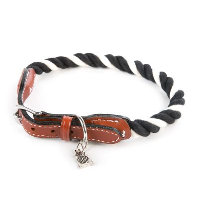 Courtly Twist Pet Collar - Large