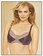 Lilyette® Enchantment 3 Section Cup Bra
