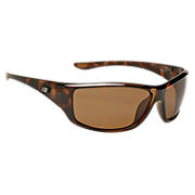 Sunglasses with Polarized Lenses, Brown