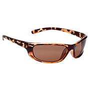 Sunglasses with Polarized Lenses, Brown with Silver
