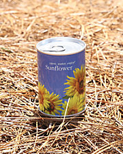 Macflowers Portable Plant