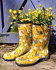 Rain & Garden Boots