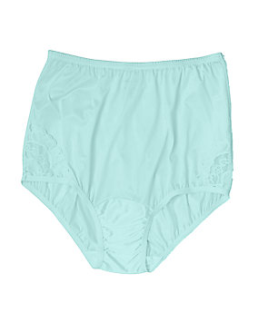 Aqua Lace Inset Nylon Brief